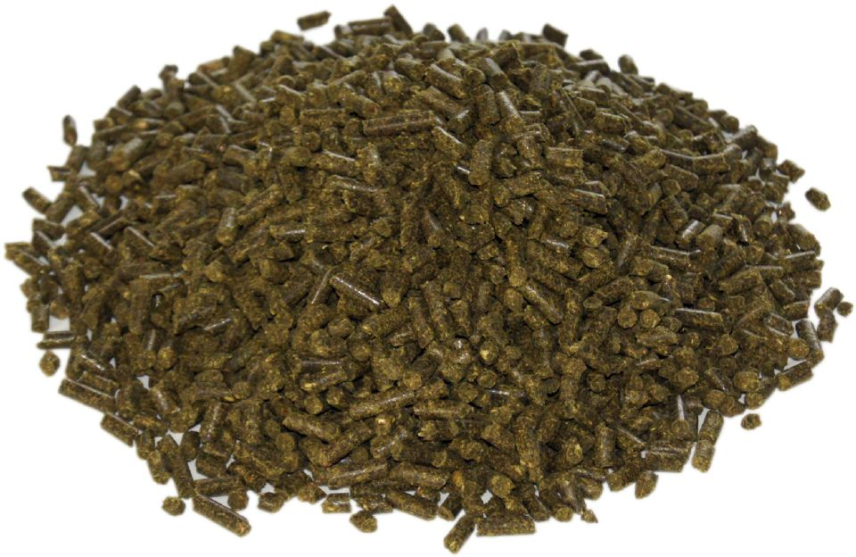 Our Horse Feeds Order Online