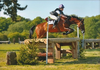 Lily at Borde Hill Novice (C) Spidge