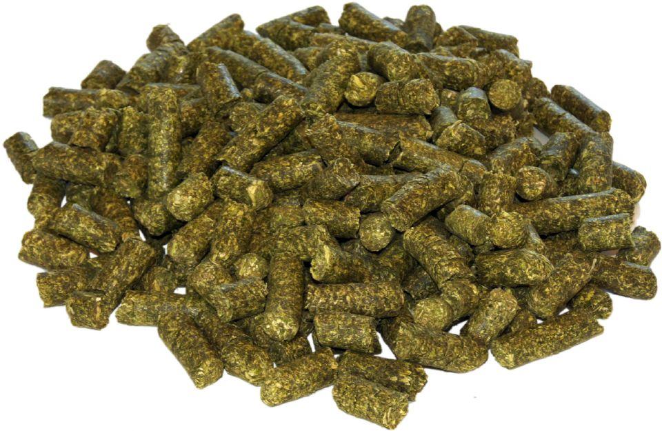 feeding alfalfa pellets to horses pets world